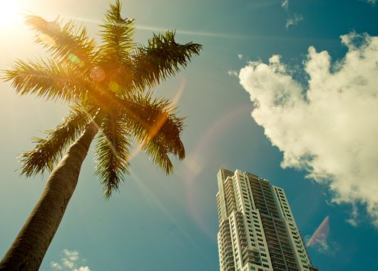 Orlando im Januar: 1 Woche im 4*Hotel direkt bei SeaWorld inkl. Flug und Zug zum Flug ab 799€