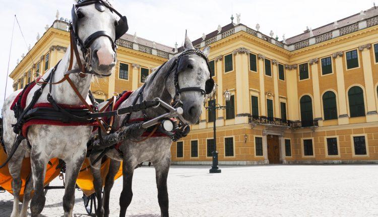 Städtetrip Wien: 3 Tage im zentralen 4*Hotel mit Flügen ab 105€