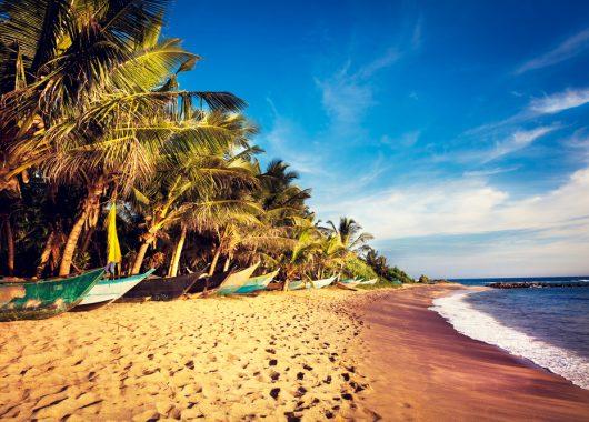 2 Wochen Sri Lanka im 4,5* Hotel inkl. HP, Flug, Rail&Fly und Transfer ab 883€