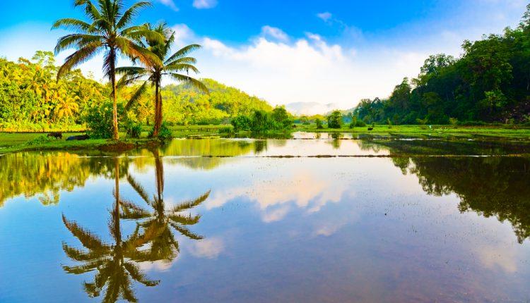 9 Tage Sri Lanka im Mai: Ausgezeichnetes 3,5* Hotel mit Halbpension, Flug & Transfer ab 780€