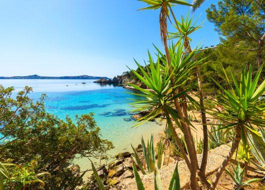 Mallorca: Eine Woche im sehr guten 4* Hotel inkl. Flug, Transfer, Rail & Fly und Frühstück ab 273€