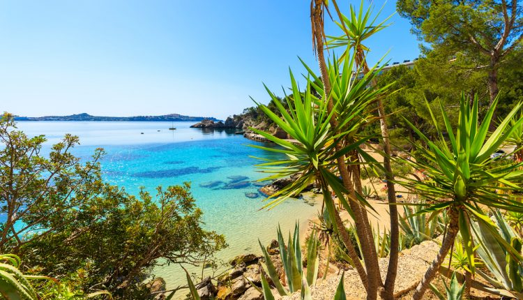 Mallorca: 14 Tage im 4-Sterne Hotel inklusive Flügen, Rail & Fly und Transfers ab 271 Euro pro Person