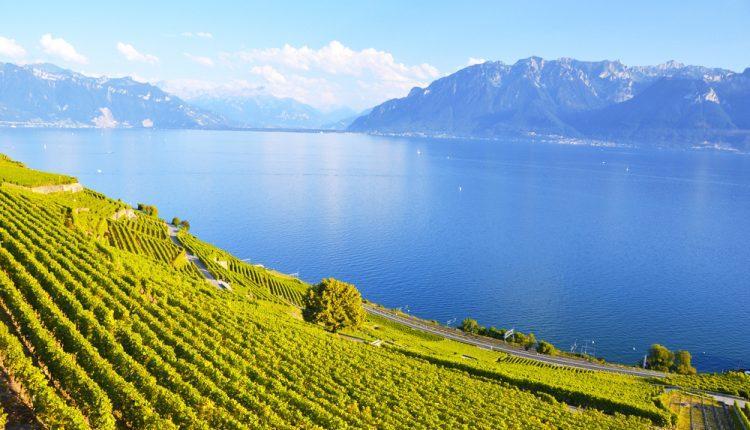 3 bis 6 Tage am Bodensee im 4* Hotel mit Frühstück, Dinner & Wellness-Oase ab 125€ p. P.