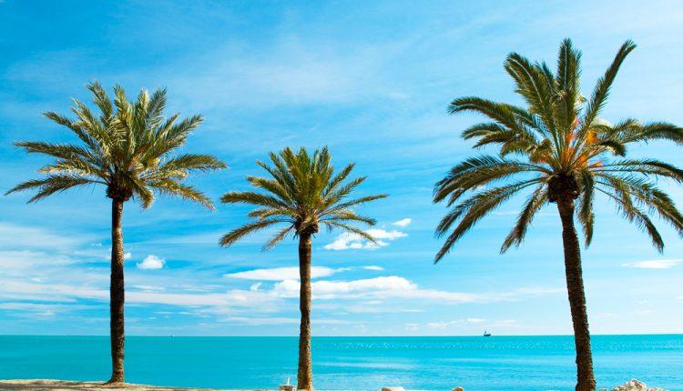 8 Tage Rimini im 4* Strandhotel mit Vollpension für 279€
