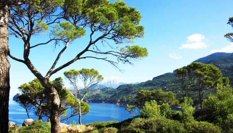 1 Woche Cala Millor im Dezember: Ausgezeichnetes 4* Hotel mit Halbpension & Flug ab 269€