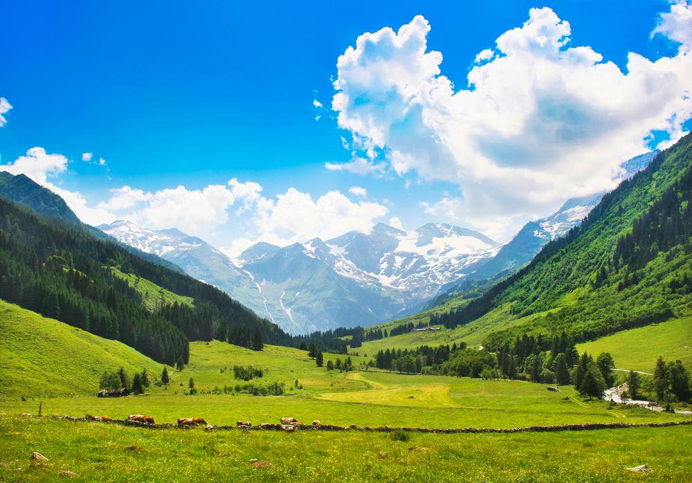 Schweiz Berge Alpen