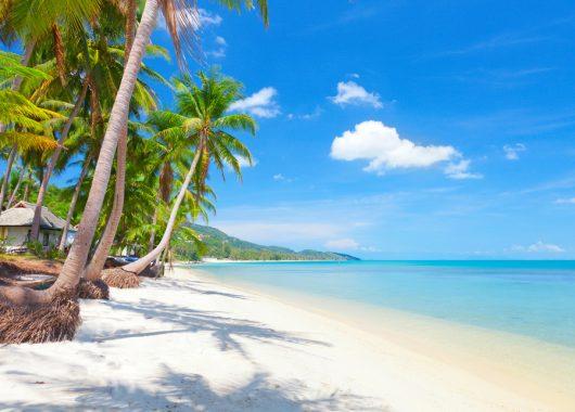 9 Tage Koh Samui im 4* Beach Resort inkl. Frühstück, Flug, Transfer und Rail&Fly ab 978€