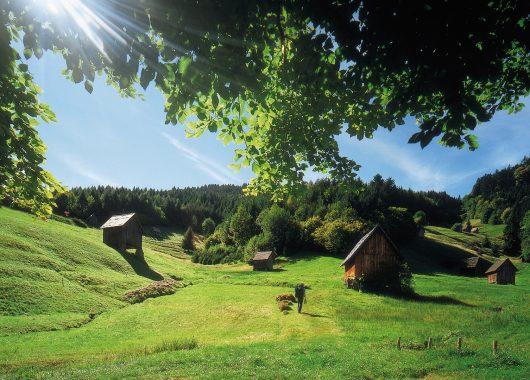 Schwarzwald: 3 Tage im 4*Hotel inkl. Frühstück, Dinner und Spa-Besuch ab 109€