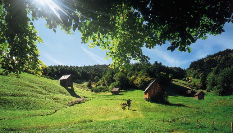 Schwarzwald: 3 Tage im 4* Hotel inkl. Vollpension und Wellness ab 229€