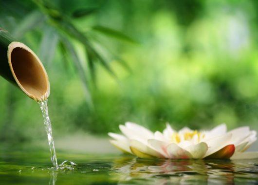 3 Tage Wellness im Sauerland: 4* Hotel mit Halbpension und Massage für 99€