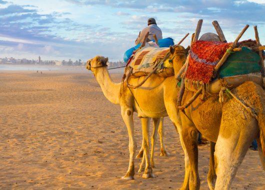 Eine Woche Agadir im 4*Hotel mit All Inclusive, Flug, Rail&Fly und Transfer ab 332€