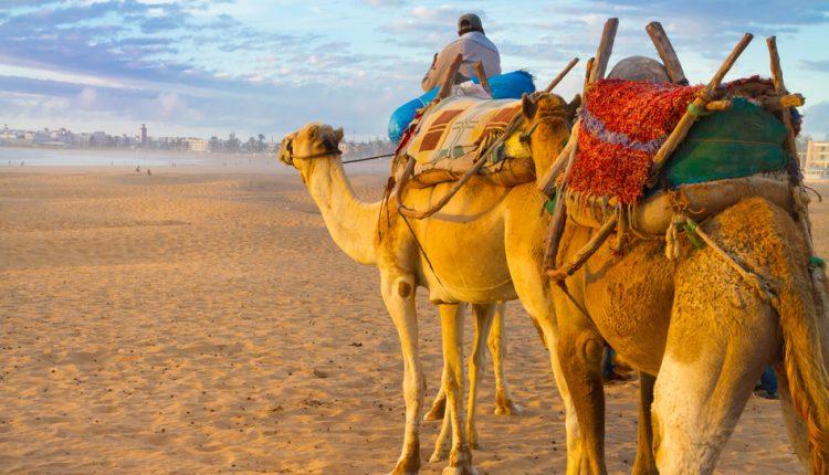 Last Minute: 1 Woche Marokko im 4* Hotel inkl. Flug, Transfer und Frühstück ab 307€