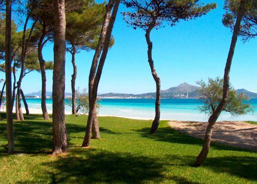 Mallorca: 7 Tage im 3,5* Hotel inkl. Flug, Transfer und Frühstück ab 282€