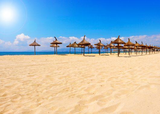 Mallorca: 7 Tage im 3* Hotel inkl. Flug, Transfer und Halbpension ab 352 Euro pro Person