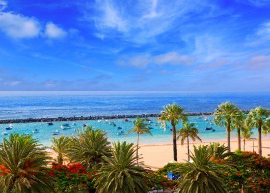 Teneriffa: 1 Woche im sehr guten 4* Hotel inkl. Flug, Transfer und Halbpension ab 342€