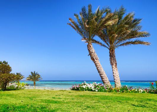 6 Tage Ägypten in einer 5* Juniorsuite mit All In, Flug und Transfer ab 265€