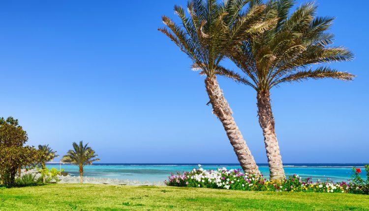 Eine Woche Marsa Alam im 5* Resort mit All In, Flug und Transfer ab 488€