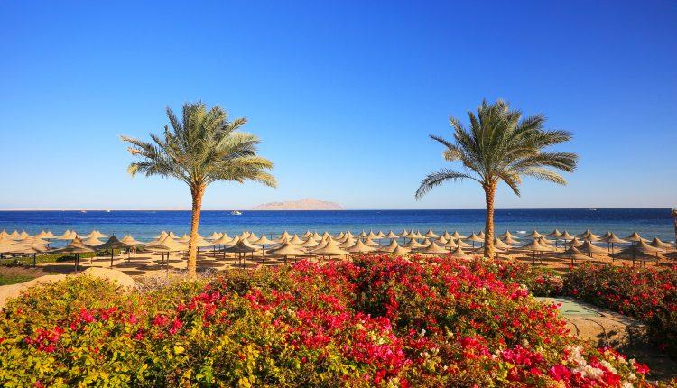 Last Minute nach Ägypten: 1 Woche All Inclusive im 4* Resort inkl. Flug und Transfer ab 350€