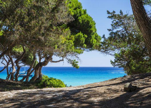 Mallorca: Eine Woche im 3* Hotel inkl. Flug und Frühstück ab 238€