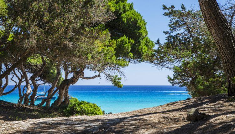 1 Woche Mallorca im April: 4,5* Hotel All Inclusive, Flug, Transfer und Rail&Fly ab 442€
