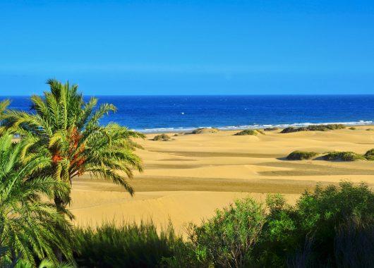 1 Woche Gran Canaria inkl. Hotel, Flug, Rail&Fly und Frühstück ab 312€