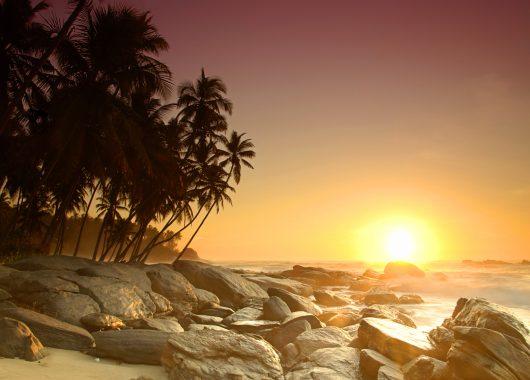 9 Tage Sri Lanka im Mai – 4* Strandhotel mit Frühstück, Flug, Transfers und Zug zum Flug ab 664€