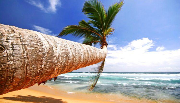 13 Tage Sri Lanka im 3* Strandhotel mit Halbpension, Flug, Transfer und Rail&Fly ab 818€
