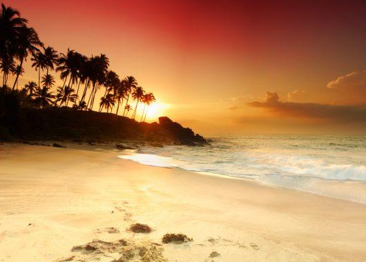 Sri Lanka: 14 Tage im guten 2,5* Hotel inkl. Flug, Transfer, Rail&Fly und Frühstück ab 826€