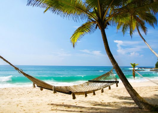 Sri Lanka: 11 Tage im 5*Hotel inkl. Frühstück, Flügen und Transfers für 878€