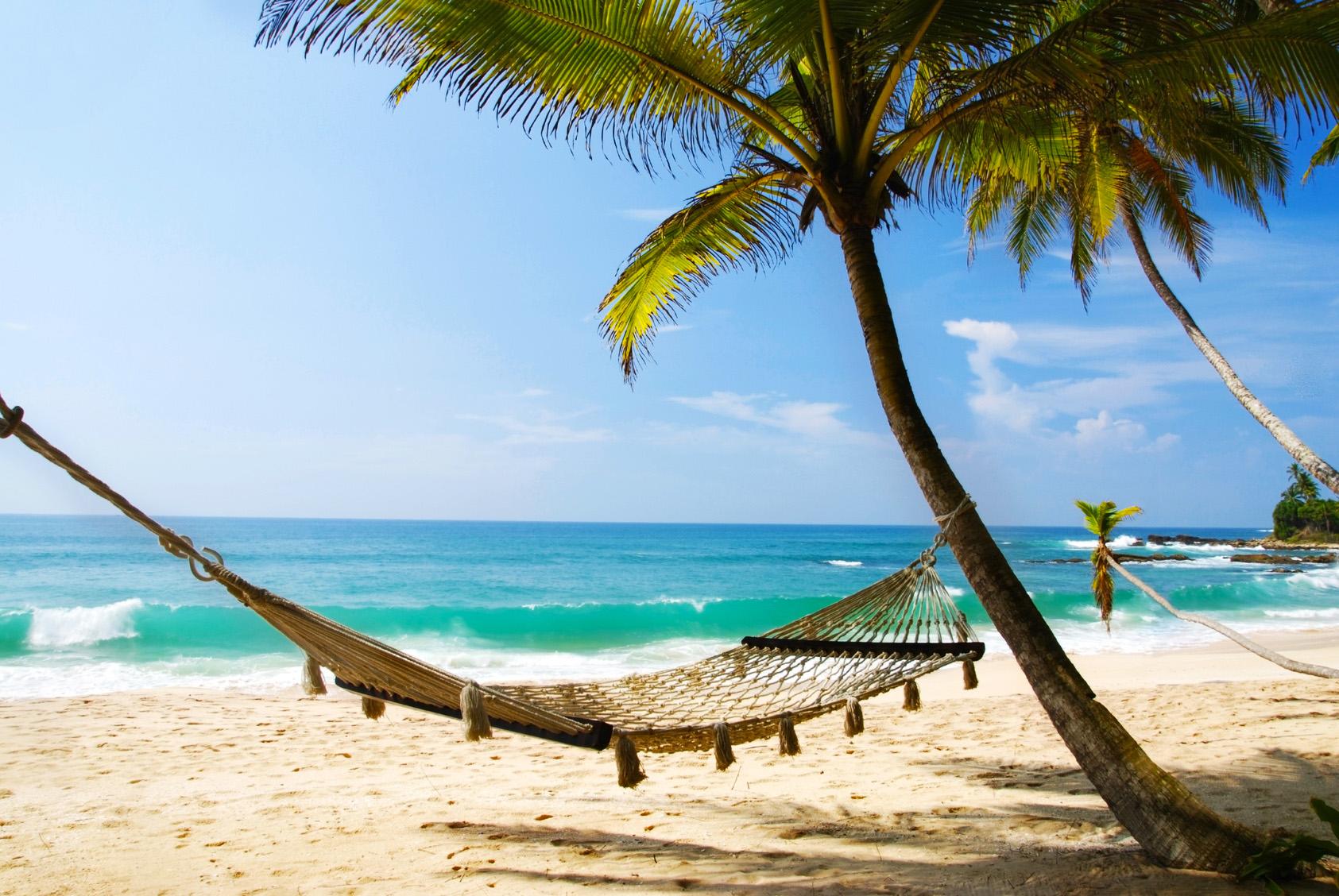 Palmen Strand Hängematte Sri Lanka Karibik