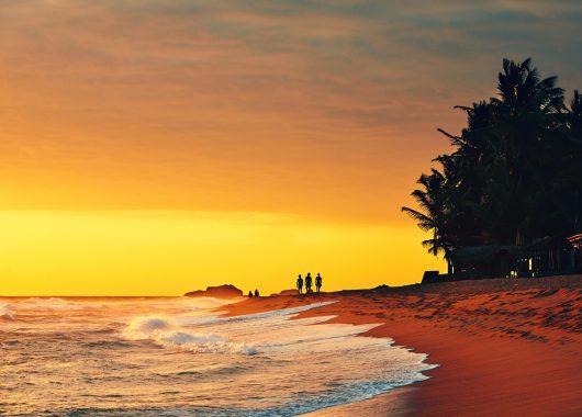 Sri Lanka: 14 Tage im 3* Hotel inkl. Flug, Transfer, Rail & Fly und Halbpension ab 847€ pro Person