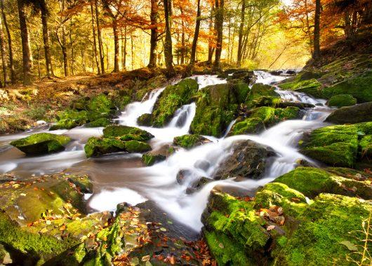 3 Tage Wellness im Thüringer Wald: 4* Hotel inkl. Frühstück, Dinner und Massage für 99€