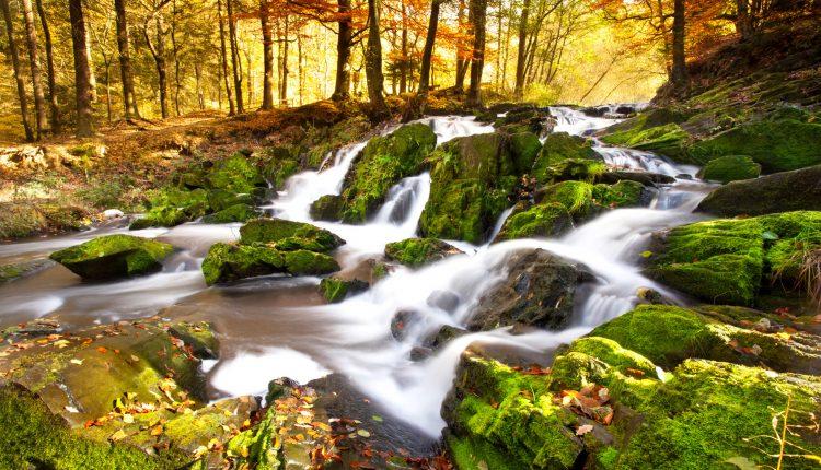 Wellness in den Willinger Bergen – 3 Tage im 4* Hotel inkl. Frühstück, Lagunenbad und Massage für 155€
