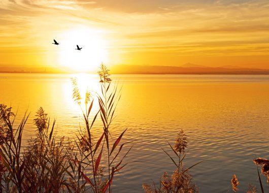 Bodensee: 3 Tage im 4*Hotel direkt am See mit Frühstück, Wellness und Eintritt in die Therme für 109€