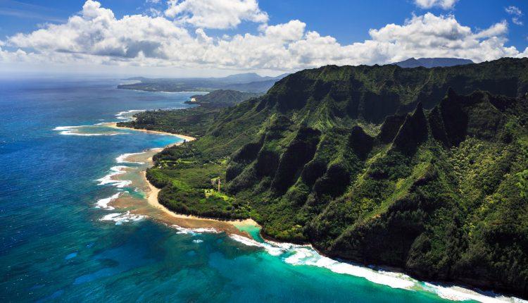 Whale Watching auf Hawaii: Mit Condor für 630€ ins Paradies