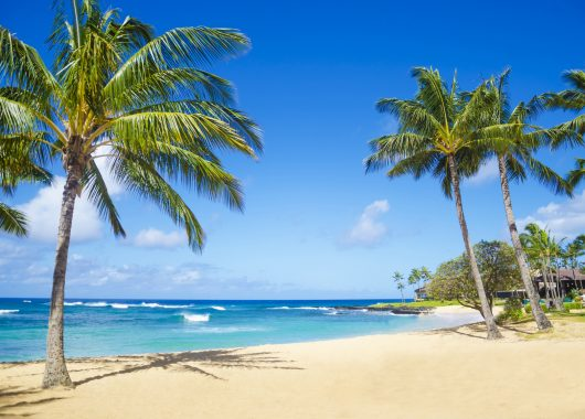 10 Tage Kenia im 3,5* Beach Hotel mit All In, Flug, Rail&Fly und Transfer ab 892€