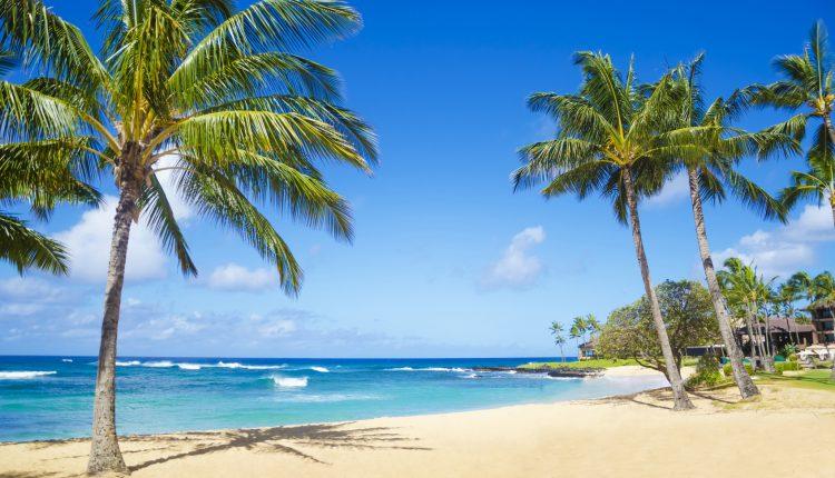 Hin- und Rückflug von Göteborg nach Hawaii für nur 502€