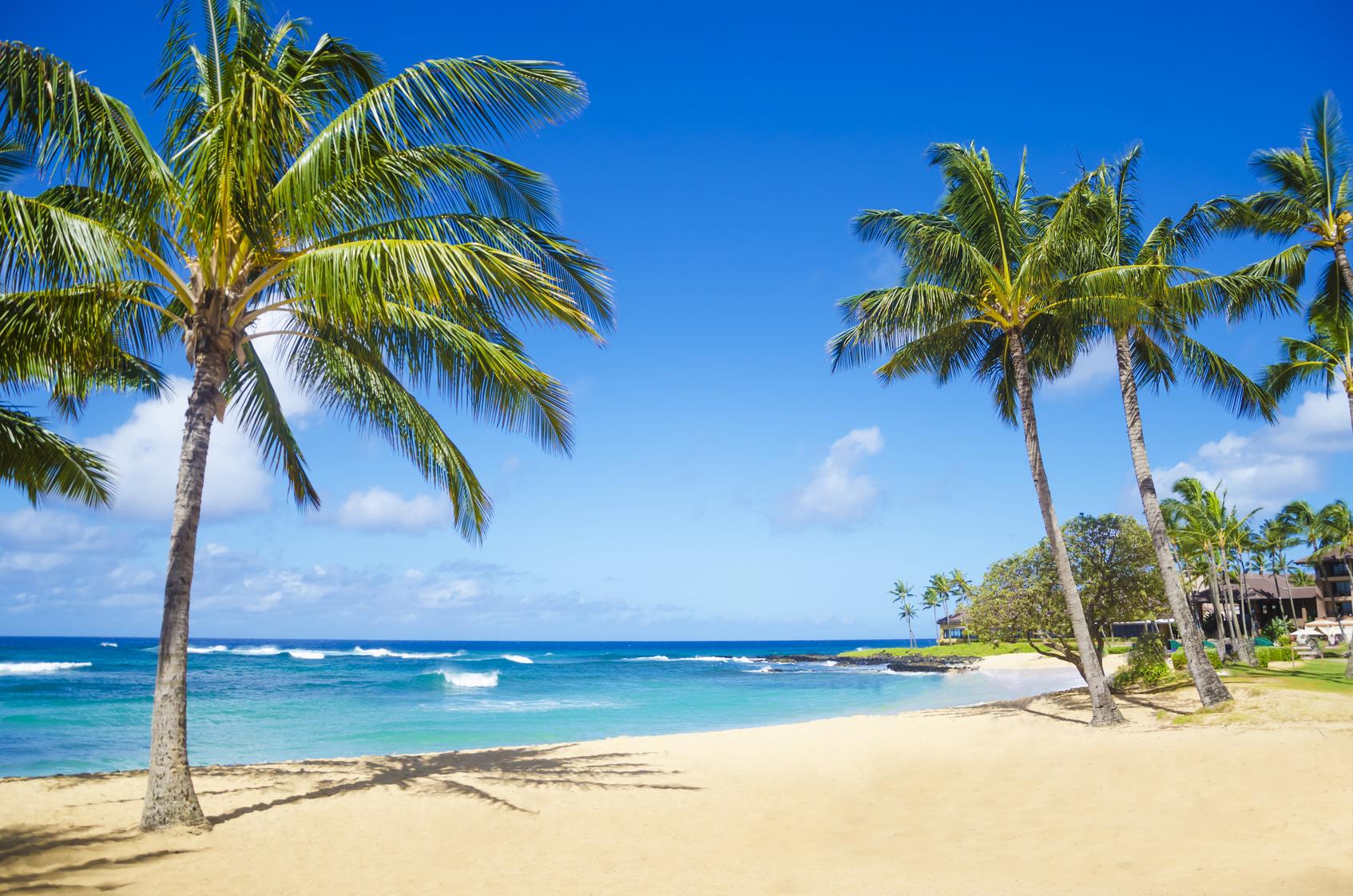 Hawaii Karibik Palmen Strand Poipu beach