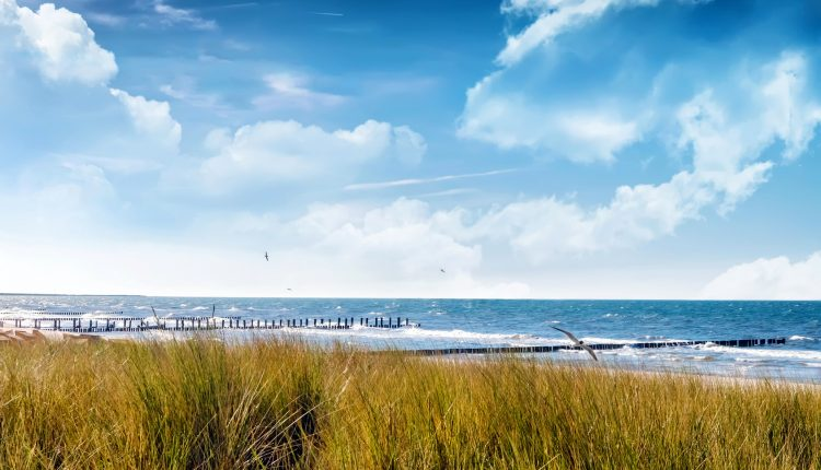 3 Tage im Ostseebad Zingst: 4* Hotel inkl. Halbpension, Wellness & Candlelight-Bad ab 129€