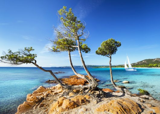 Eine Woche La Maddalena im 5* Resort inkl. Frühstück, Flug, Rail&Fly und Transfer ab 498€