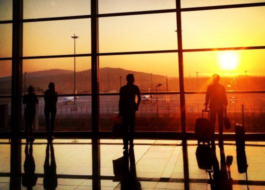 Wild am Mittwoch: Hin- und Rückflug nach Brasilia oder Cali (Kolumbien) ab 484€