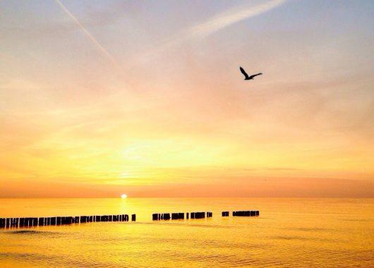 Polnische Ostsee: 3 bis 8 Tage im tollen Hotel inklusive Halbpension und Welcome Drink ab 49€