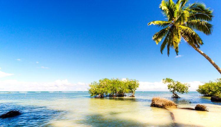 Singlereise: 9 Tage Dominikanische Republik im 4* Hotel All Inclusive, Flug, Transfer und Rail&Fly ab 893€