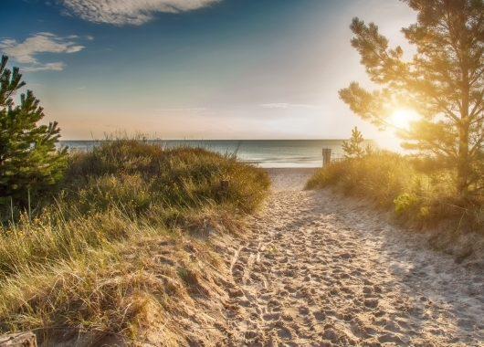 Sonnenurlaub am dänischen Vejers Strand:  4, 6 oder 8 Tage im Cottage inkl. Wasserpark-Eintritt und geführte Naturwanderung ab 169€