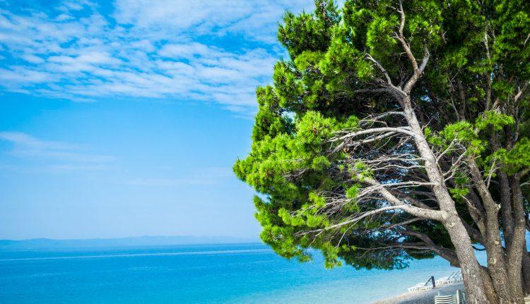 Mai: 7 Tage Kroatien im 4* Hotel inkl. Flug und Transfer für 248€