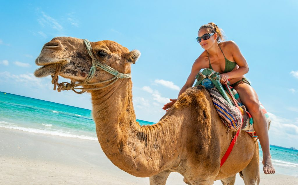 Tunesien Ägypten
