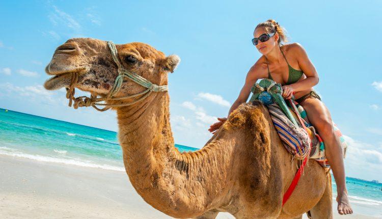 11 Tage Hurghada Ende Januar: 4* Hotel mit Meerblick, Halbpension, Flug und Transfer ab 288€ ab Stuttgart