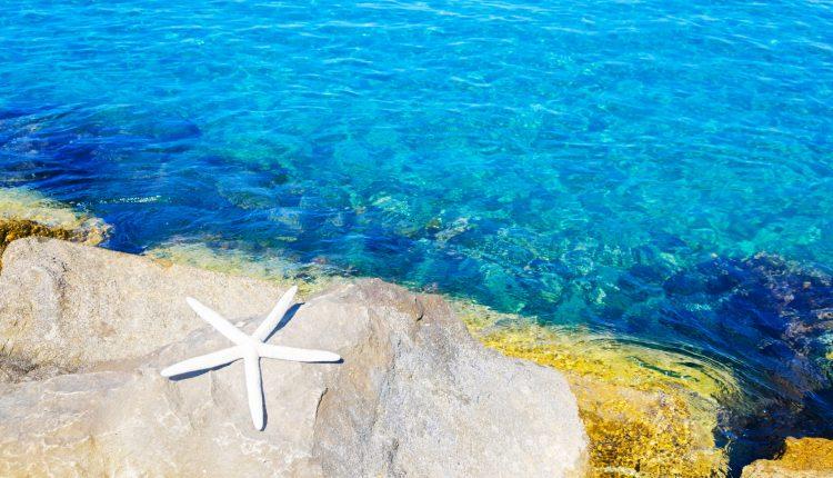 8 Tage 5*-Luxus auf Nordzypern inkl. Flügen, Transfers, Rail&Fly und Halbpension ab 399€