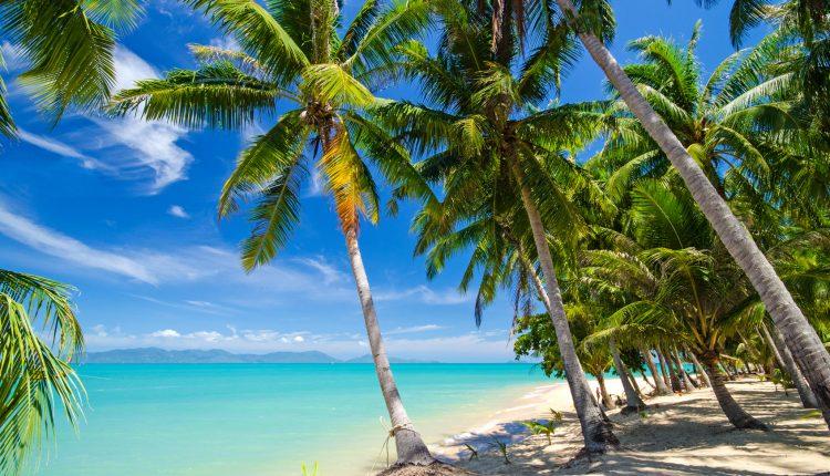 14 Tage Dominikanische Republik im Dezember: 4* Hotel All In, Flug & Transfer ab 997€