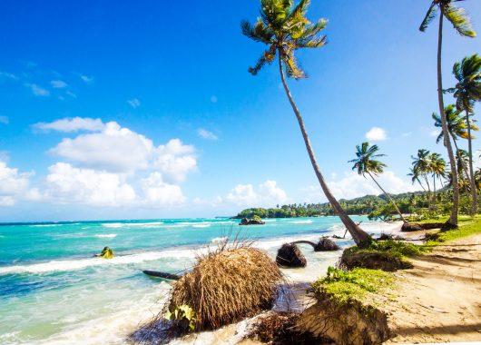 2 Wochen Dominikanische Republik im 4* Hotel mit All Inclusive, Flug, Rail&Fly und Transfer ab 1196€